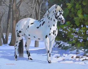 eBay Blog Image Appo Horse Snow 11x14